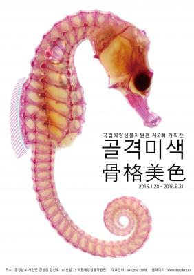 The 2nd MABIK Special Exhibition : Transparent Fish